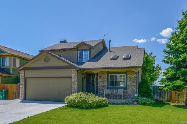 11646 W Maplewood Avenue, Littleton, CO 80127 (#6986309) :: My Home Team