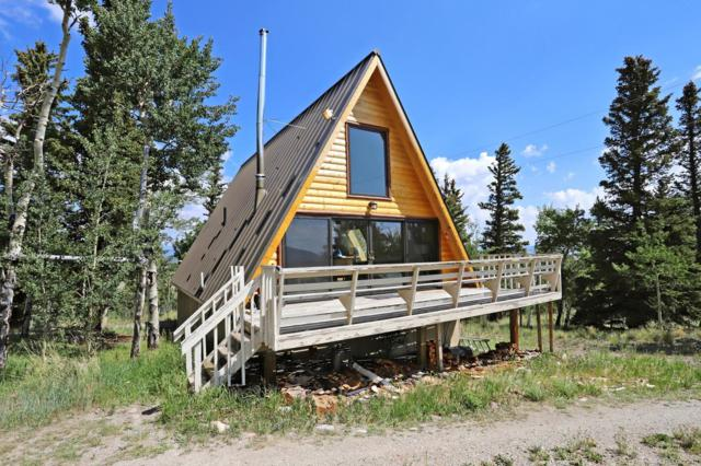 377 Sheep Ridge Road, Fairplay, CO 80440 (MLS #6987219) :: Kittle Real Estate