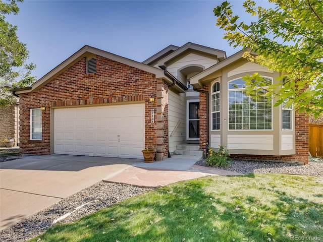 7135 Leopard Drive, Littleton, CO 80124 (#6999028) :: The DeGrood Team