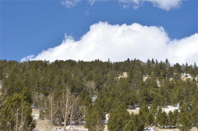 Rhyolite Mountain Mesa, Cripple Creek, CO 80813 (MLS #6999674) :: 8z Real Estate