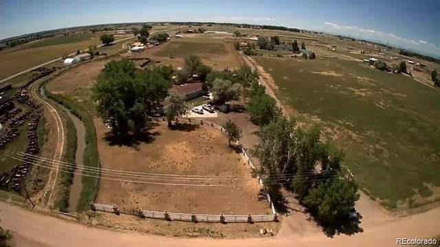 10810 County Road 22, Fort Lupton, CO 80621 (#6999886) :: iHomes Colorado