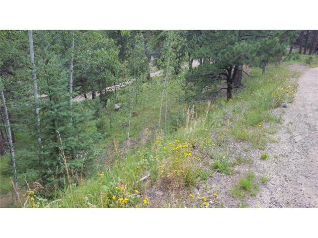 Blue Creek Road, Evergreen, CO 80439 (#7003165) :: The Peak Properties Group