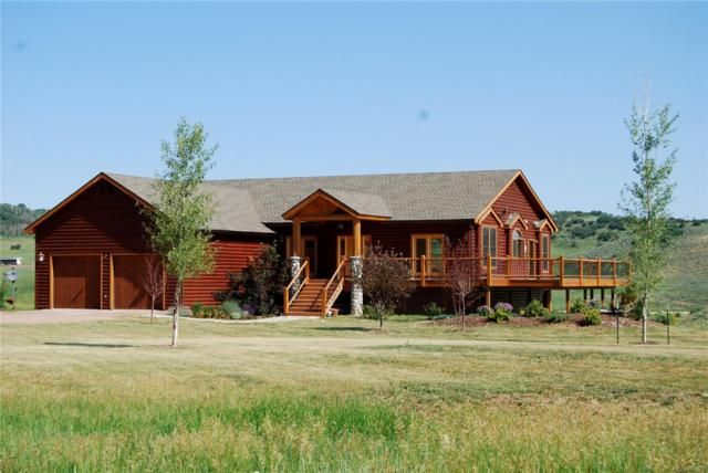 29850 Chokecherry Lane, Steamboat Springs, CO 80487 (#7007593) :: The DeGrood Team