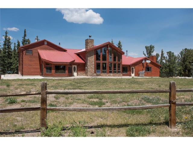 89 Sheep Creek Trail, Fairplay, CO 80440 (MLS #7009329) :: 8z Real Estate