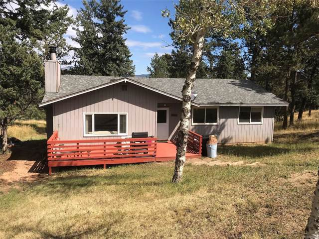 113 Bluebird Lane, Bailey, CO 80421 (MLS #7011758) :: 8z Real Estate