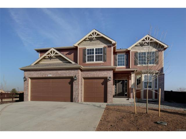 5642 Connor Street, Timnath, CO 80547 (#7012631) :: Bring Home Denver