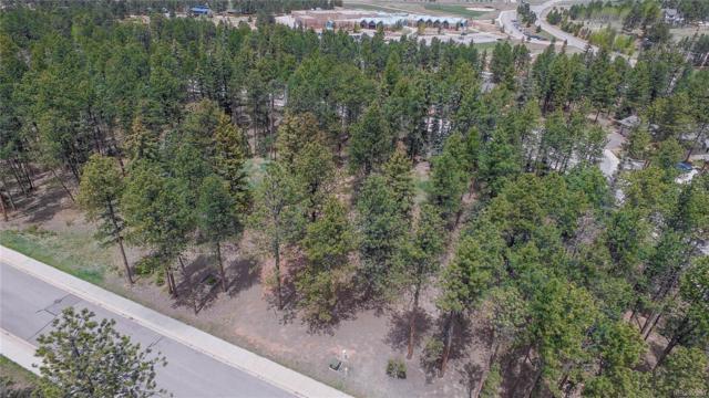 630 Meadowlark Lane, Woodland Park, CO 80863 (#7014352) :: RazrGroup