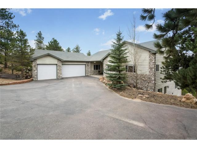 292 Aspen Lane, Black Hawk, CO 80422 (MLS #7016088) :: 8z Real Estate