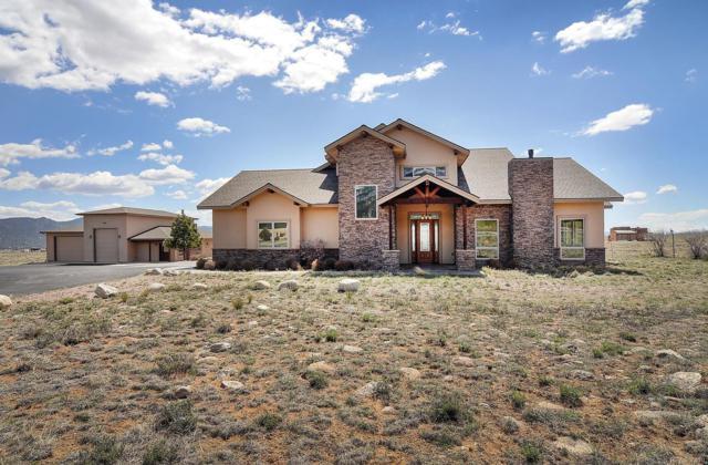 27602 Rancho Sawatch, Buena Vista, CO 81211 (#7018108) :: Colorado Home Finder Realty