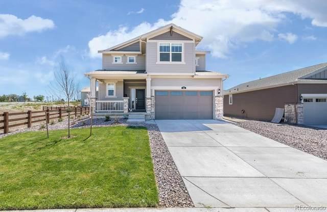 914 Peach Leaf Lane, Elizabeth, CO 80107 (MLS #7018880) :: 8z Real Estate