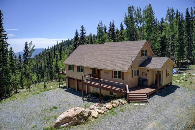 1176 Squaw Mountain Trail, Idaho Springs, CO 80452 (#7019170) :: The Margolis Team