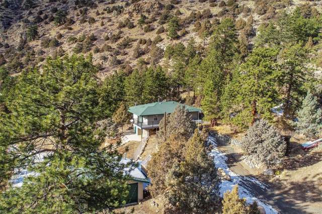 110 Mountain Street, Dumont, CO 80436 (MLS #7019236) :: 8z Real Estate