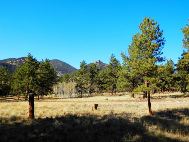 11993 Clear Creek Road, Hartsel, CO 80449 (#7024648) :: Wisdom Real Estate