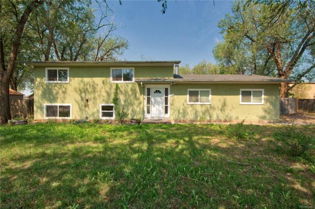 315 S Race Street, Fountain, CO 80817 (#7025531) :: Wisdom Real Estate