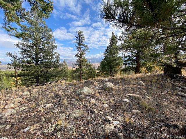 332 Mt Elbert Drive, Twin Lakes, CO 81251 (#7028004) :: The DeGrood Team