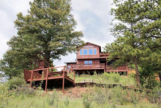 12447 S Cindy Avenue, Pine, CO 80470 (MLS #7028141) :: 8z Real Estate
