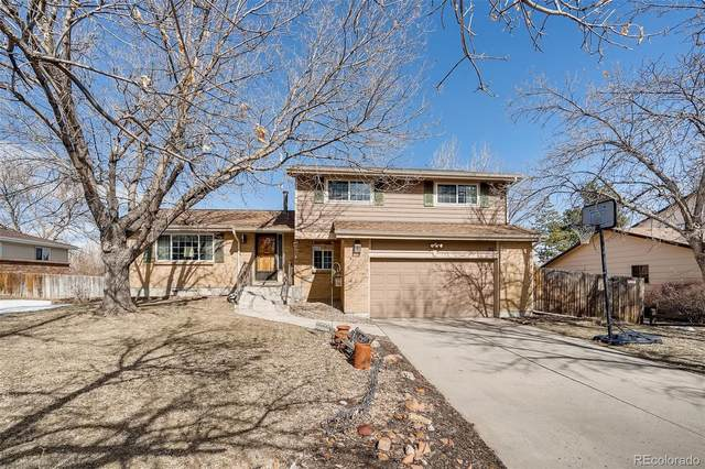 801 Altair Drive, Littleton, CO 80124 (#7032414) :: Re/Max Structure