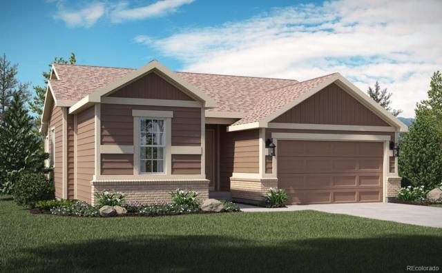 17745 Leisure Lake Drive, Monument, CO 80132 (#7032504) :: HomePopper
