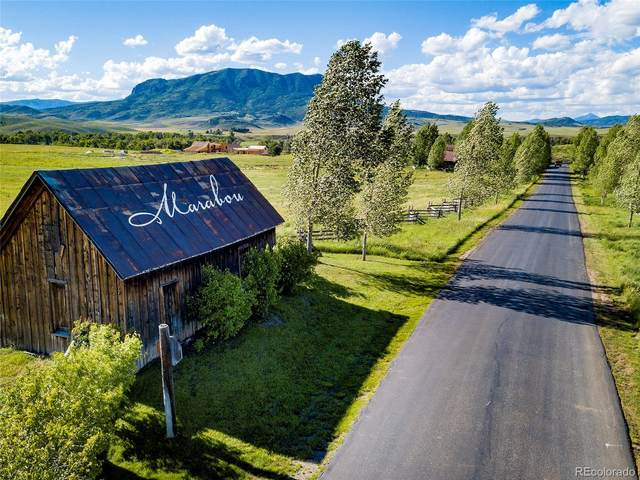 26705 Wild Iris Path, Steamboat Springs, CO 80487 (MLS #7032534) :: Neuhaus Real Estate, Inc.