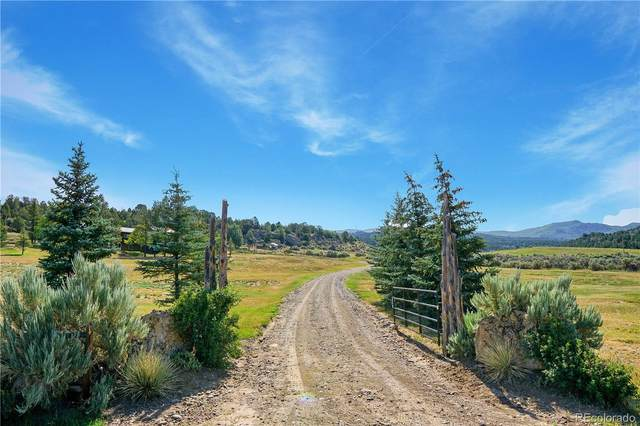 6900 County Road 7, Meeker, CO 81641 (#7035503) :: The DeGrood Team