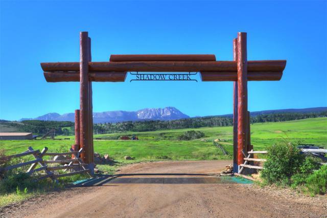 171 Buckhorn Trail, Silverthorne, CO 80498 (#7038078) :: The Heyl Group at Keller Williams