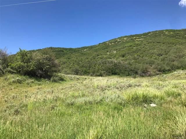 30575 County Road 179, Oak Creek, CO 80467 (MLS #7042453) :: 8z Real Estate