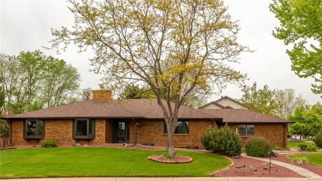 8092 W Nichols Avenue, Littleton, CO 80128 (#7047880) :: 5281 Exclusive Homes Realty