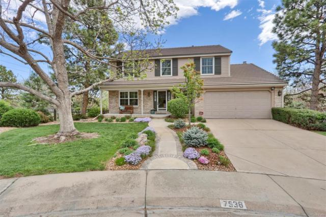 7538 S Jasmine Way, Centennial, CO 80112 (MLS #7047912) :: 8z Real Estate