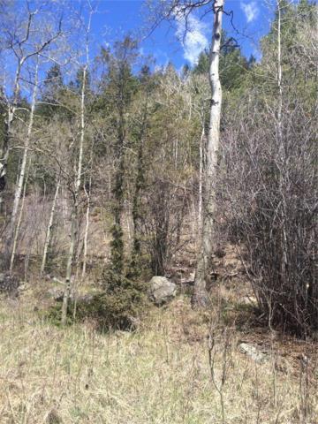 0 Hamlin Gulch Road, Idaho Springs, CO 80452 (MLS #7048484) :: 8z Real Estate