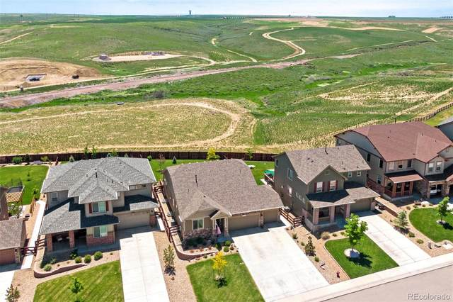2251 Stonefish Drive, Windsor, CO 80550 (#7048574) :: Compass Colorado Realty