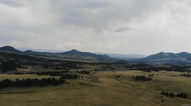 1515 County Rd 59, Guffey, CO 80820 (#7049250) :: The DeGrood Team
