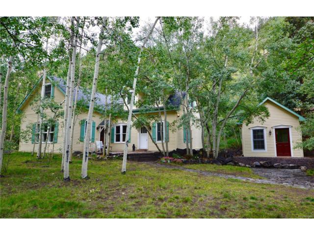 325 Main Street, Silver Plume, CO 80476 (#7049697) :: The Peak Properties Group