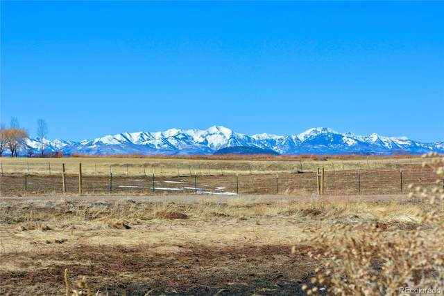 228 Moreno Lane, Durango, CO 81303 (#7049791) :: The DeGrood Team