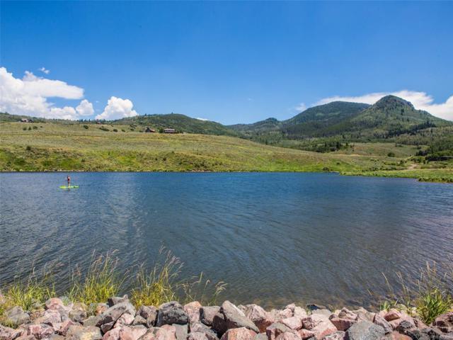 30025 Bannock Trail, Oak Creek, CO 80467 (#7055496) :: The DeGrood Team