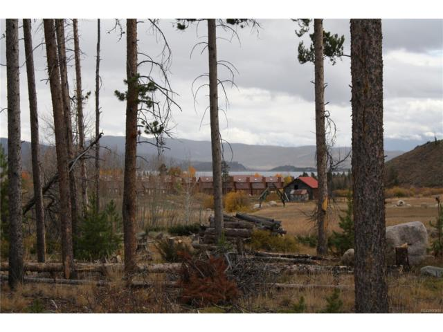 22 County Road 4435, Grand Lake, CO 80447 (MLS #7055857) :: 8z Real Estate