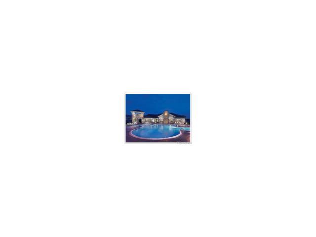 9716 Dexter Lane, Thornton, CO 80229 (MLS #7056620) :: 8z Real Estate