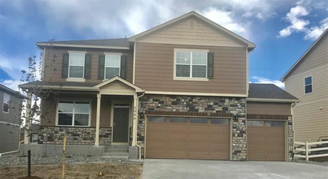 5946 High Timber Circle, Castle Rock, CO 80104 (#7057920) :: The HomeSmiths Team - Keller Williams