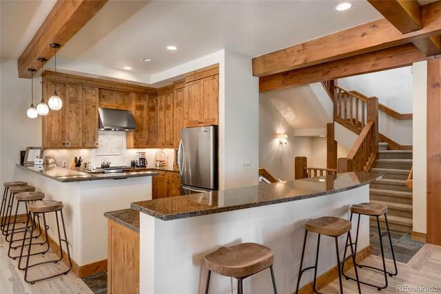 1301 Turning Leaf Court, Steamboat Springs, CO 80487 (#7058500) :: Wisdom Real Estate