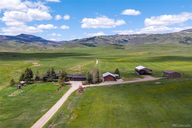 20770 County Road 56, Steamboat Springs, CO 80487 (#7059733) :: Colorado Home Finder Realty