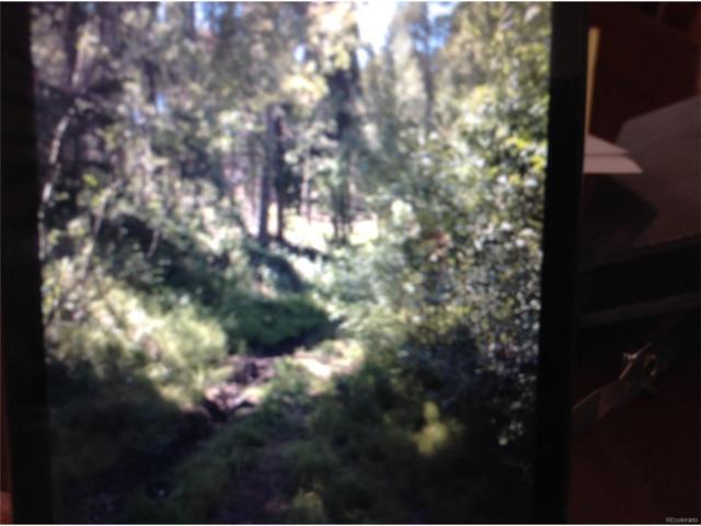 11903 Coal Creek Heights Drive, Golden, CO 80403 (#7063687) :: The Peak Properties Group