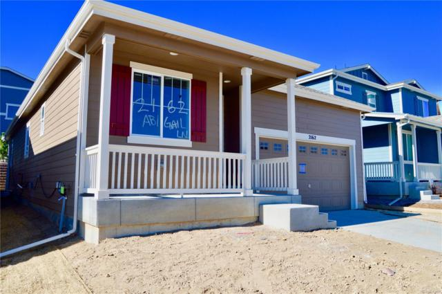 2162 Abigail Lane, Castle Rock, CO 80104 (MLS #7065874) :: Kittle Real Estate