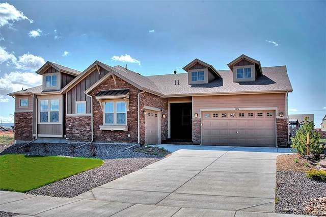 7970 Gore Creek, Littleton, CO 80125 (#7066127) :: HomeSmart Realty Group