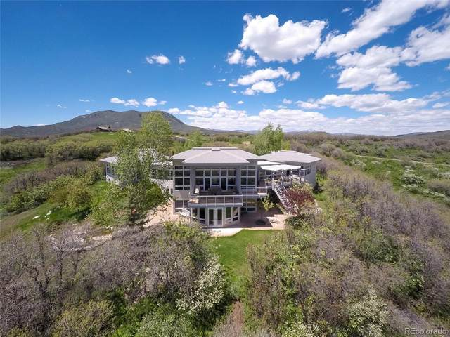 43600 Old Elk Trail, Steamboat Springs, CO 80487 (MLS #7067380) :: 8z Real Estate