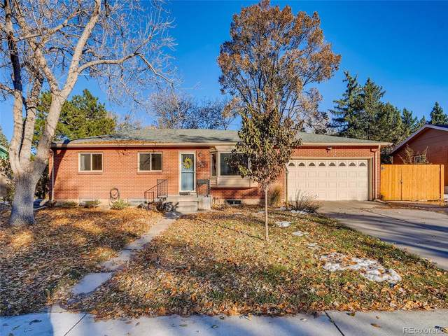 558 S Swadley Street, Lakewood, CO 80228 (MLS #7068039) :: Kittle Real Estate