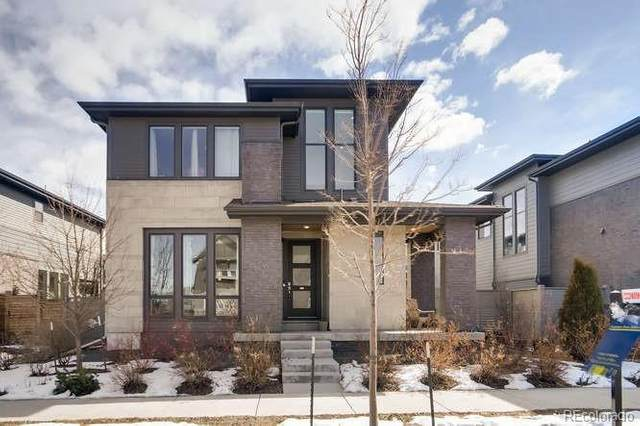 5402 Verbena Way, Denver, CO 80238 (#7068197) :: The DeGrood Team
