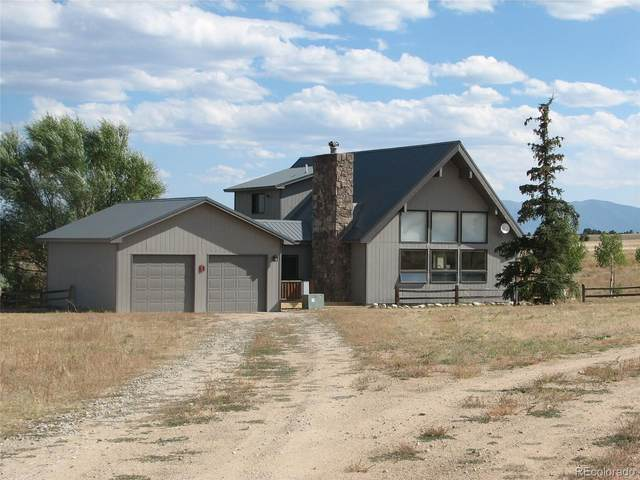 13955 County Road 273, Nathrop, CO 81236 (#7069613) :: Bring Home Denver with Keller Williams Downtown Realty LLC