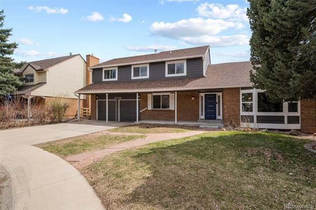10708 W Chautauga Mountain Road, Littleton, CO 80127 (MLS #7070429) :: 8z Real Estate