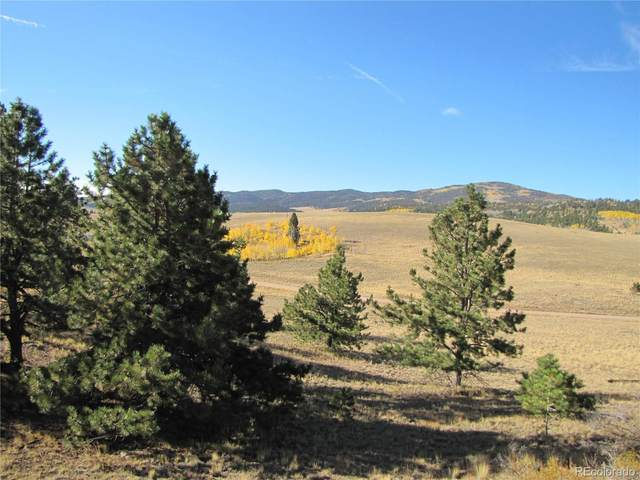 00 Forge Road, Hartsel, CO 80449 (#7072662) :: The DeGrood Team