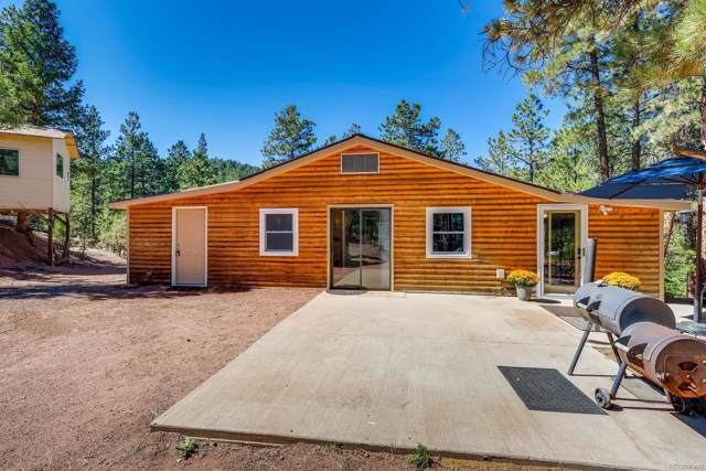 28503 Amerind Springs Trail, Pine, CO 80470 (#7073875) :: The DeGrood Team