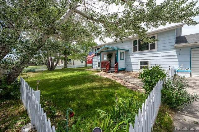 263 E 3rd Place, Byers, CO 80103 (MLS #7074148) :: 8z Real Estate